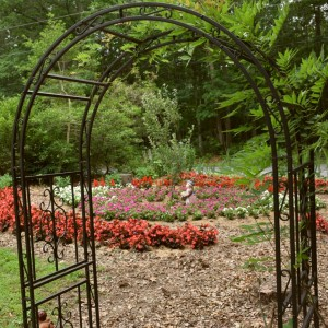 Nathan's Garden